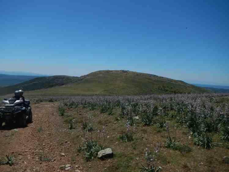 Panorami centro Sardegna